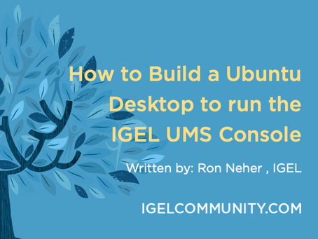 How to Build a Ubuntu Desktop to run the IGEL UMS Console