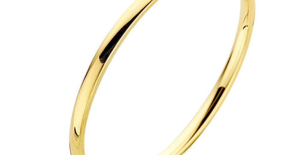 14 krt. Geelgouden bangle met zilveren kern - 4 mm