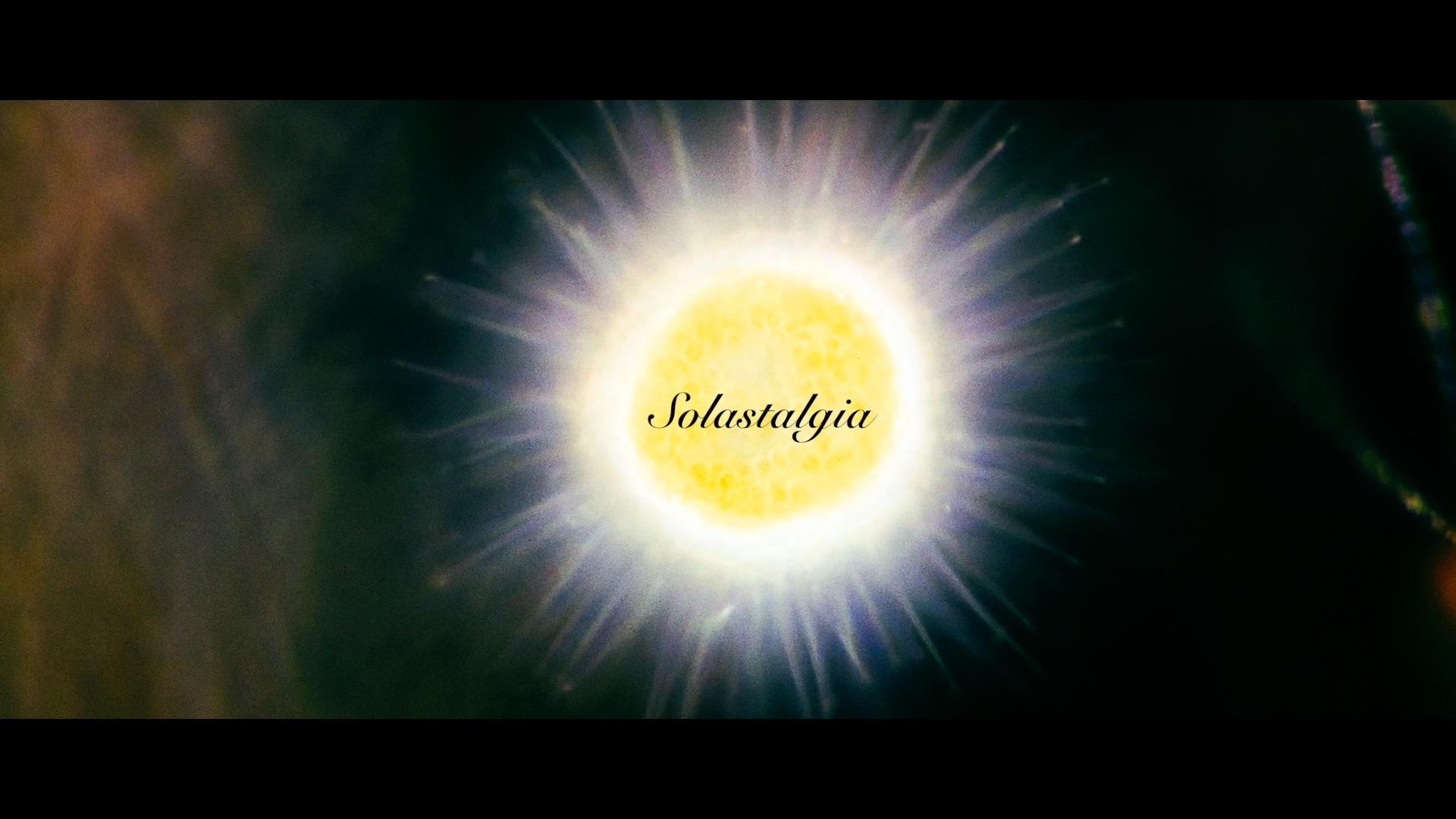 Solastalgia (promo)