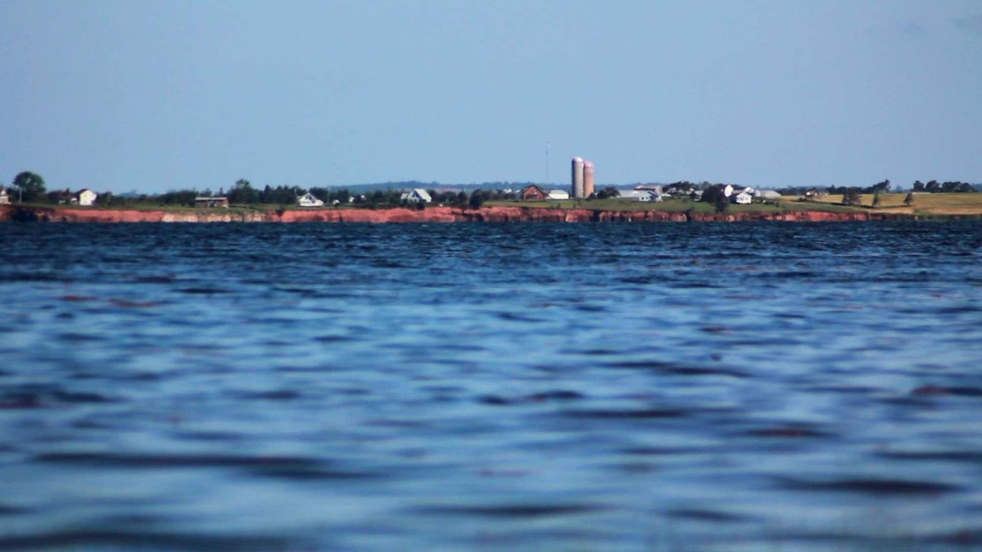 IslandGreen6.jpg