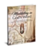 1 Samuel Book 2 new 3D -2.jpg
