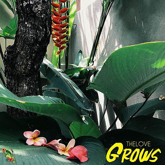 THELOVE - GROWS