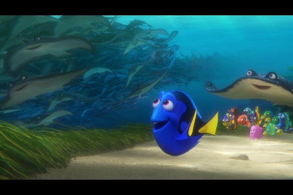 Dory discovering she can find her parents