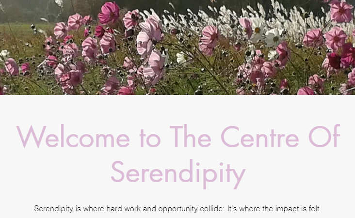 the centre of serendipity