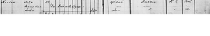 John Hanlon, Mary Ann Hanlon (nee McNamara), John Hanlon II