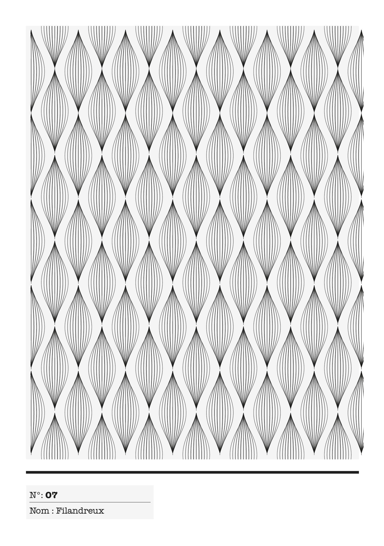 PP - Texture 07 - filandreux_Plan de tra