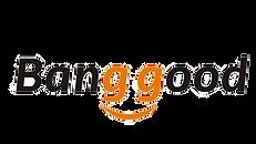 BangGood-logo-1546622408976.png