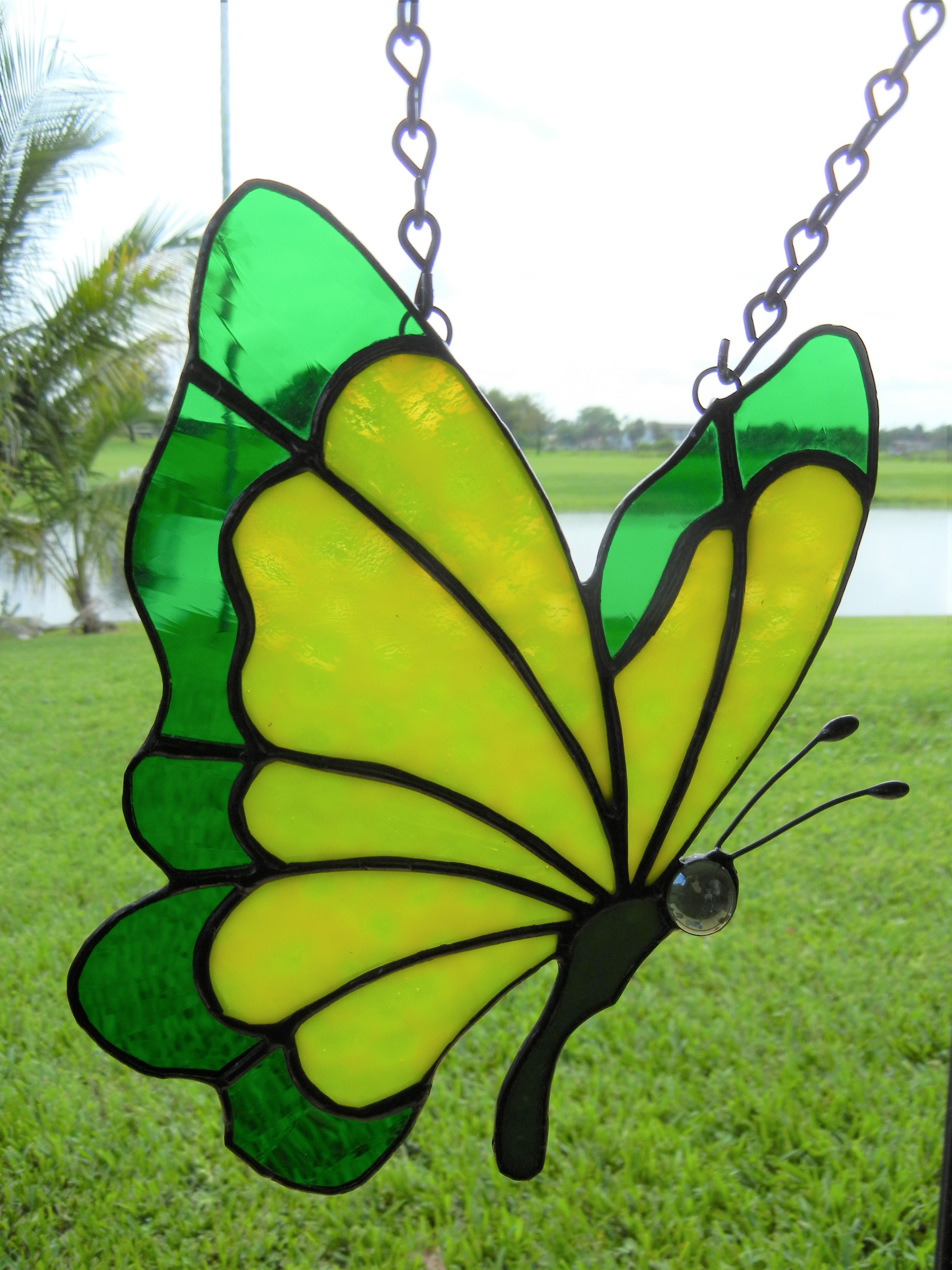 YellowGreen Butterfly 1