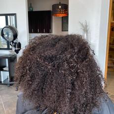 Reveal Hair Studio AZ