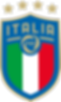 logo_figc png.png