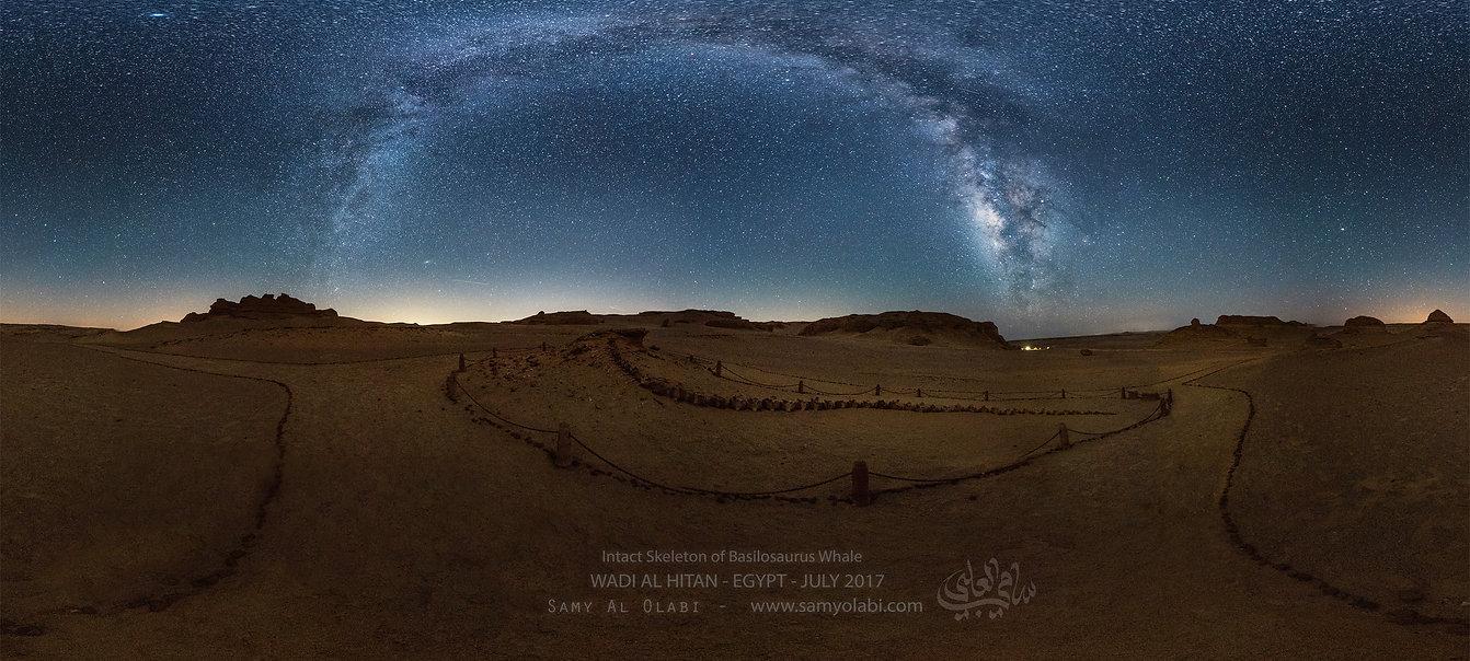 WADI AL HITAN - EGYPT - JULY 2017-basilo