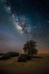 Take me there - Samy Al Olabi (2).jpg