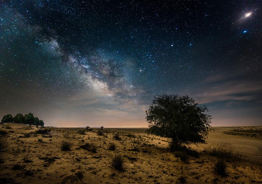 Celestial Dream-SamyAlOlabi.jpg