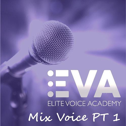 Pro Voice Lessons Online - Mix Middle Voice 1