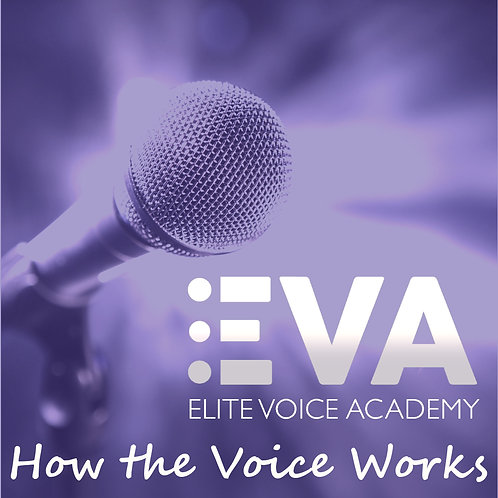 Video Lesson 1: How The Voice Works & Breathing
