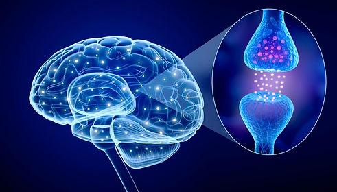 synapses-in-detail.jpg
