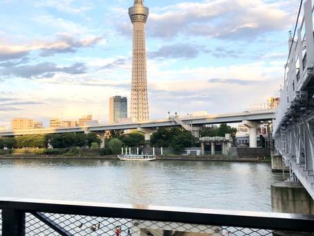 東京新景點📢