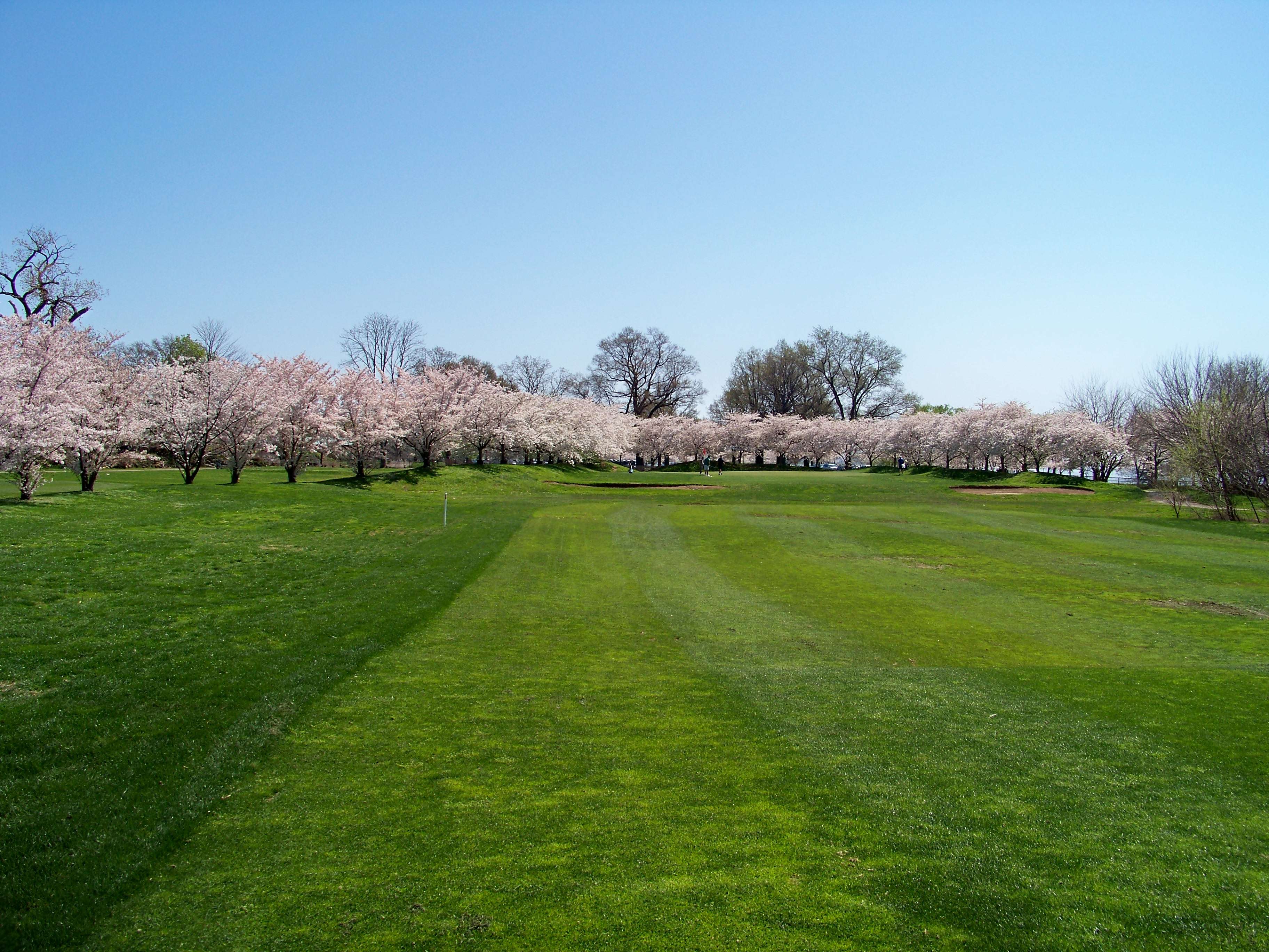 Image result for east potomac golf course