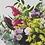 Thumbnail: Florist's Choice