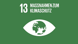 agenda_2030_ziel_013_klimawandel_460.jpg