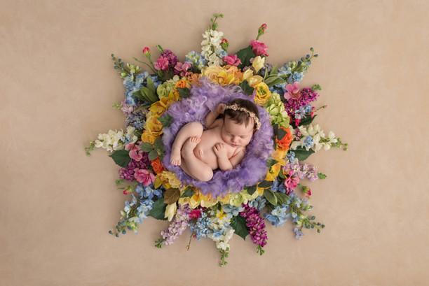 Newborn in a Floral Nest