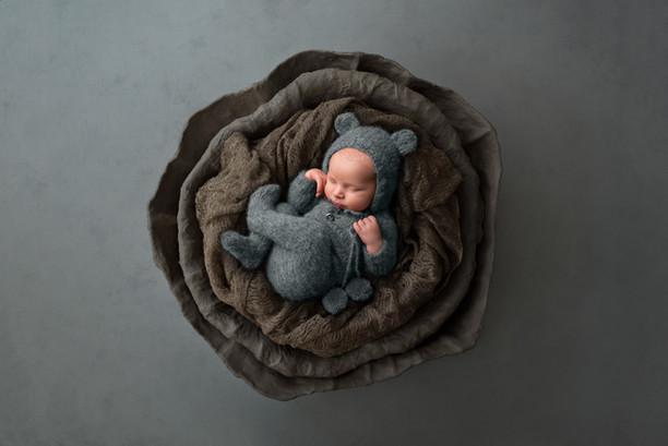 Newborn in a Nest