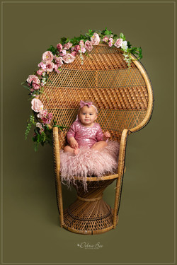 Beautiful Sitter Photography in Grimsby