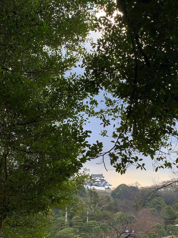 13 Hikone Castle