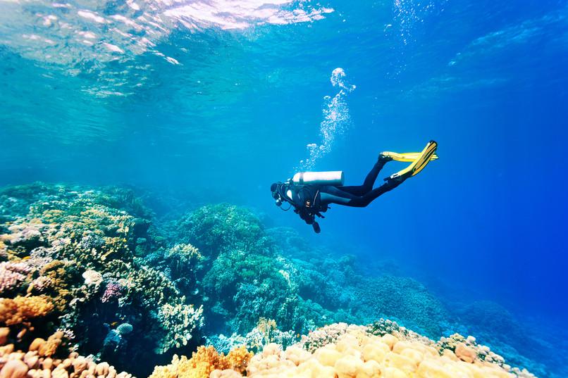 Egypt-Red-Sea.jpg
