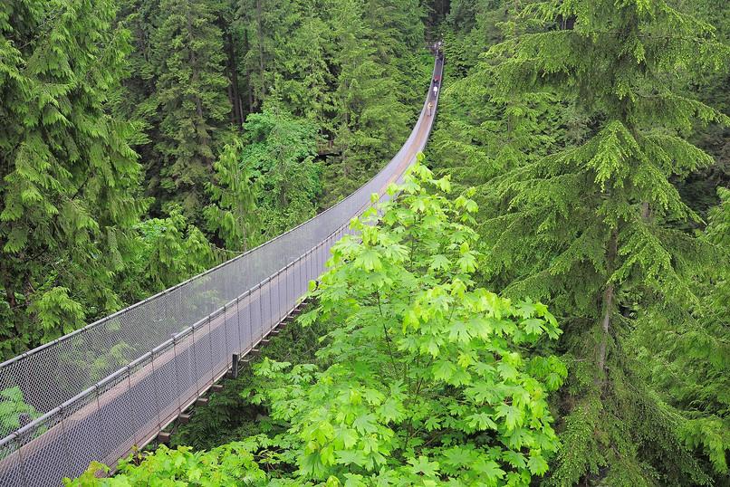 Canada-Capilano-Suspension-Bridge.jpg