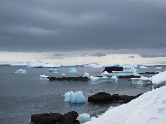 Antarctica+10_1_1.JPG