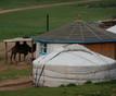 Mongolia+9_1.JPG