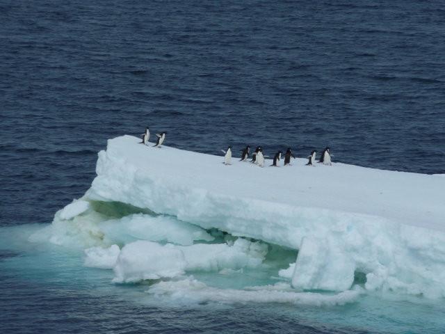 Antarctica+25.JPG