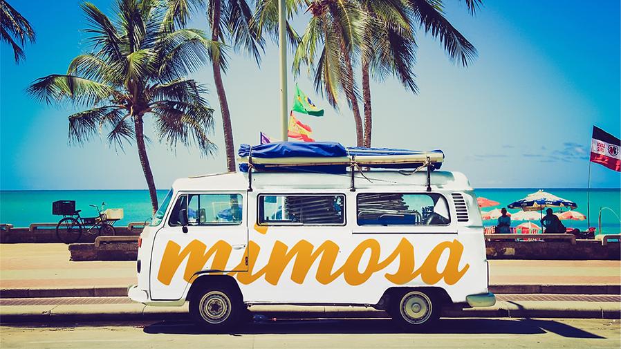 Mimosa Van.png