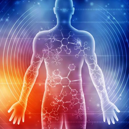 What is Bioenergetic Analysis?