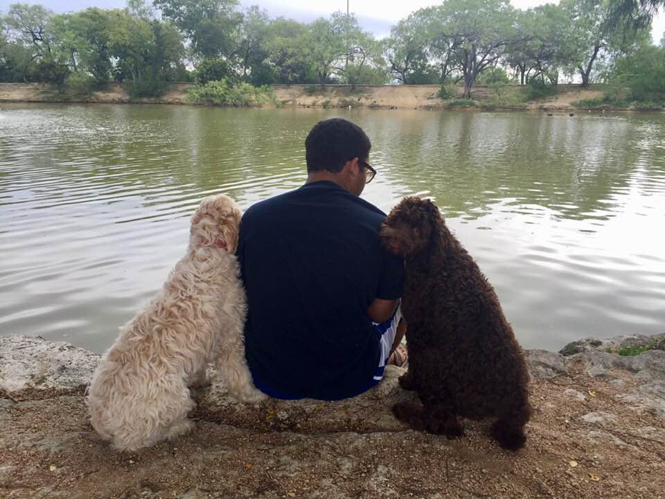 Fullscreen Page | Puppies For Sale In San Antonio | Mission