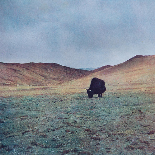 Cyril Manzini - L'esprit des hauts plateaux (France)
