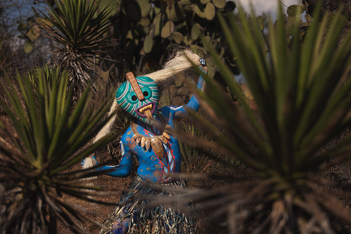 Serpent vert ds les cactus