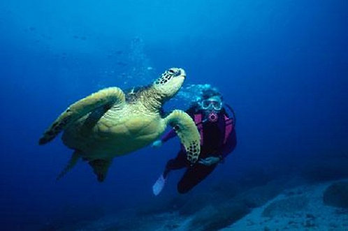 Scuba Diving in Nicaragua
