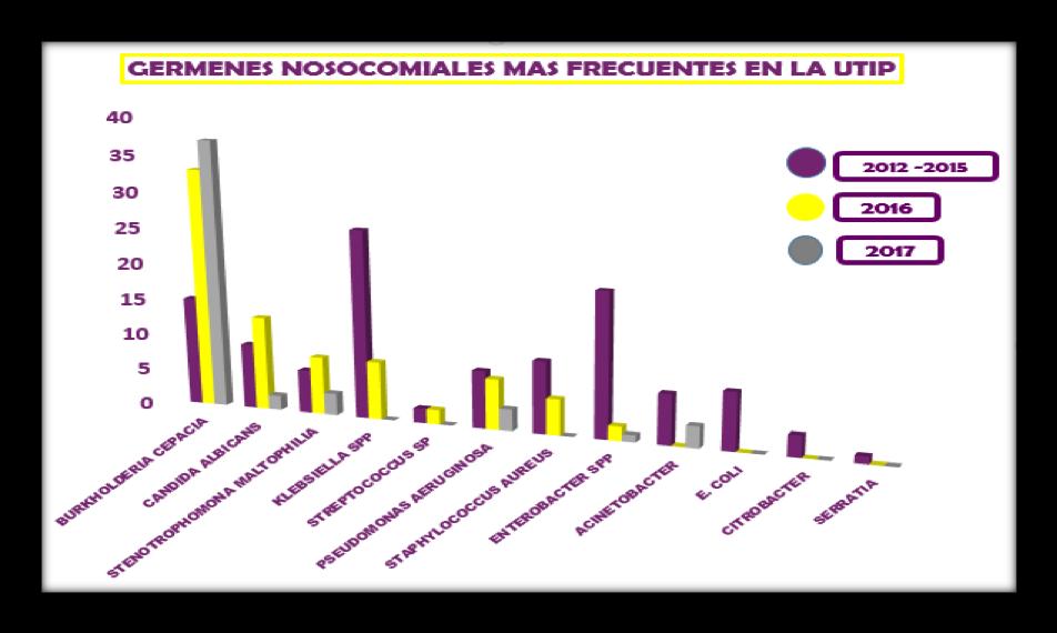 Gráfico 3. Gérmenes más frecuentes en UTIP en los periodos evaluados.