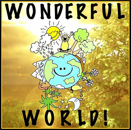 Wonderful world book