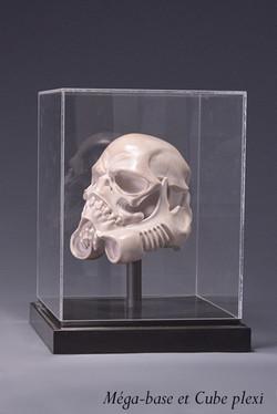skulltrooper marbre plexi 2 + anotation.JPG