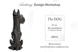 dog - anatomy