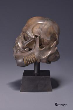 skulltrooper bronze 2.JPG