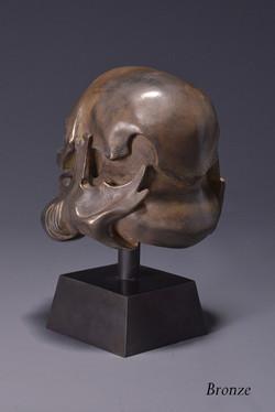 skulltrooper bronze 1.jpg