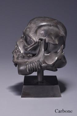 sculltrooper carbone 3.jpg