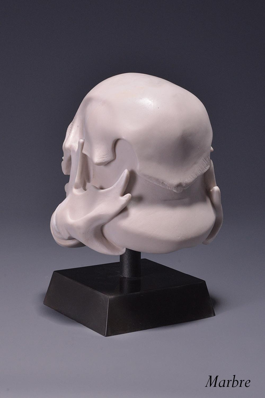 skulltrooper marbre 3.JPG