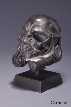 sculltrooper carbone 2.jpg