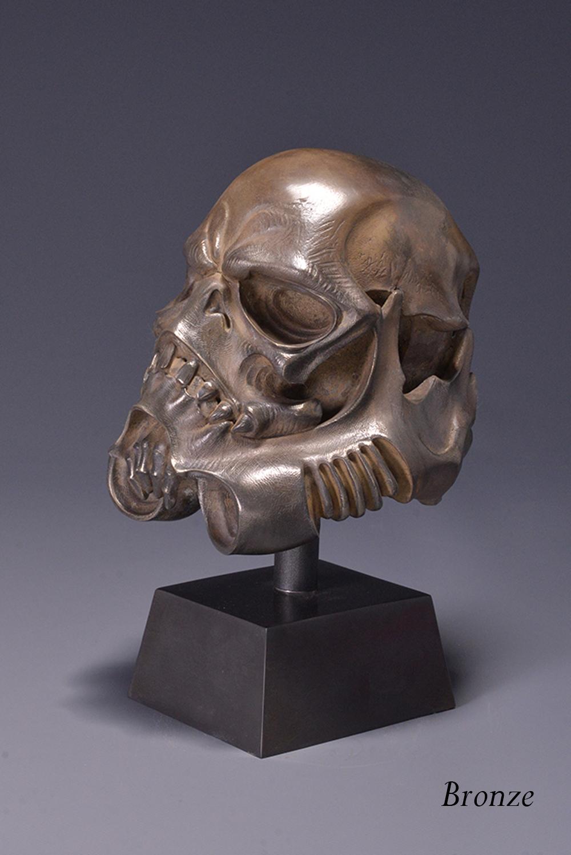 skulltrooper bronze 3.JPG