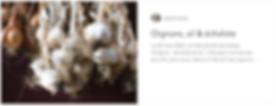L_ail_oignons_echalottes_au_potager__ton